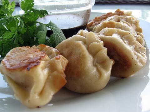 http://haleysuzanne.wordpress.com/2009/06/15/daring-cooks-pork-potstickers/