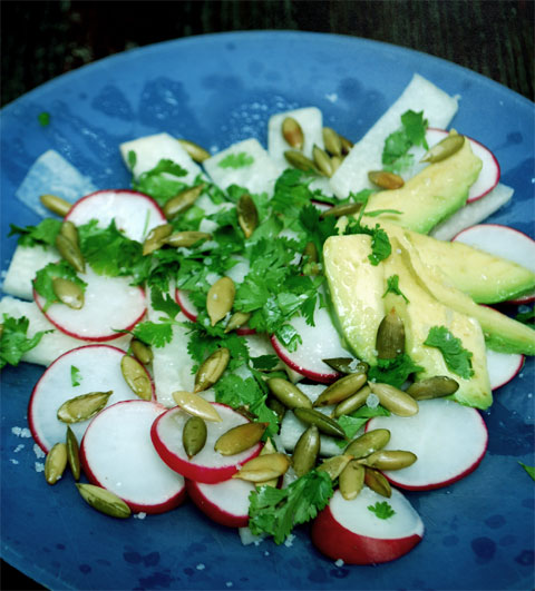 Jicama, Radish and Avocado Salad